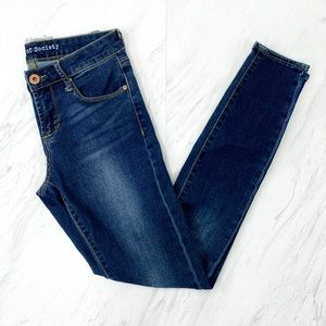 Articles of Society- Skinny Jeans Tahoe Wash 24